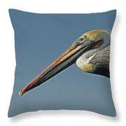 Pelican Upclose Throw Pillow