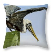 Pelican Wings Throw Pillow