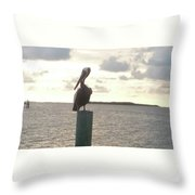 Pelican Zen Throw Pillow