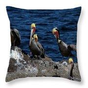 Pelicanos Throw Pillow
