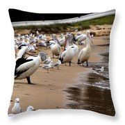 Pelicans At Pearl Beach 1.0 Throw Pillow