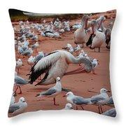 Pelicans At Pearl Beach 3.0 Throw Pillow