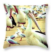 Pelicans At Pearl Beach 4.1 Throw Pillow