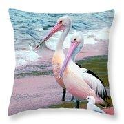 Pelicans At Pearl Beach 5.1 Throw Pillow