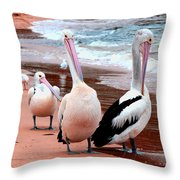 Pelicans At Pearl Beach 5.2 Throw Pillow