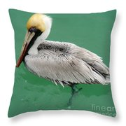 Pelican's Cove Throw Pillow