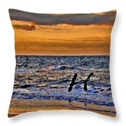 Pelicans Crusing The Coast Throw Pillow