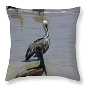 Pelicans Enjoying The Day At Playa Manzanillo Throw Pillow