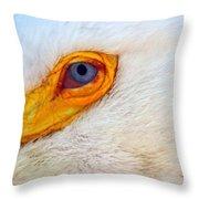 Pelican's Eye Throw Pillow