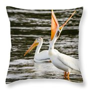 Pelicans Fishing Throw Pillow