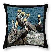 Pelicans Fort Pierce, Fl. Jetty Throw Pillow