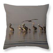 Pelicans On Beach Throw Pillow