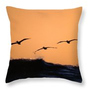 Pelicans Over The Pacific Throw Pillow