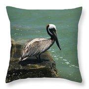 Pelican's Perch Throw Pillow
