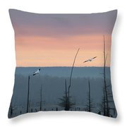 Pelicans Welcome The Day Throw Pillow