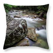 Pemi-basin Trail Throw Pillow