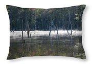 Pemigewasset Wilderness - White Mountains New Hampshire Usa Throw Pillow