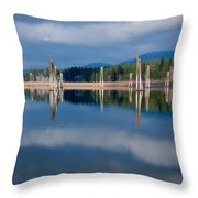 Pend Oreille River Pilings Throw Pillow