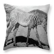 Penda Throw Pillow