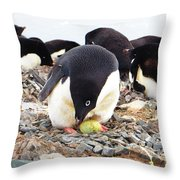 Penguin And Her Egg Throw Pillow