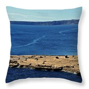 Peninsula De Valdez Throw Pillow