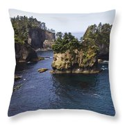 Peninsula Point Throw Pillow
