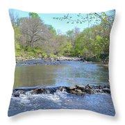 Pennypack Creek - Philadelphia Throw Pillow
