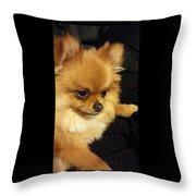 Pensive Pom Throw Pillow