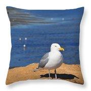 Pensive Seagull Throw Pillow