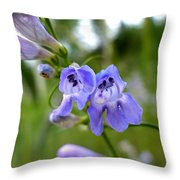 Penstemon 1 Throw Pillow