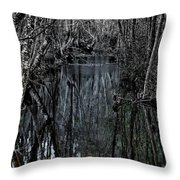 Penumbra Throw Pillow