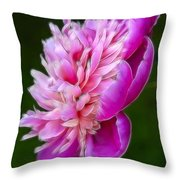 Peonie Debut Throw Pillow