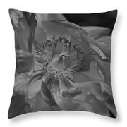 Peonie In Bw Throw Pillow