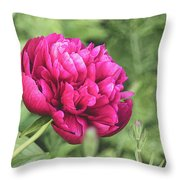 Peony 1162 Textured Throw Pillow