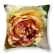 peony 19 Pale Yellow and Pink Tree Peony macro Throw Pillow