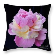 peony 4 Double Light Pink Peony II Throw Pillow