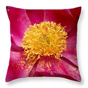 Peony Abstract Throw Pillow