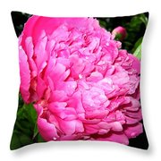 Peony And Raindrops Throw Pillow