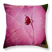 Peony Blossom Opening Throw Pillow
