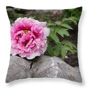 Peony On The Rocks - The Marvels Of Spring Throw Pillow