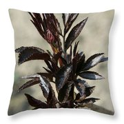 Peony Sprouts Throw Pillow