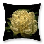 Peony Time Throw Pillow
