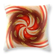 Pepermint Swirl Throw Pillow