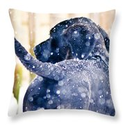 Pepper And The Snow Storm Throw Pillow