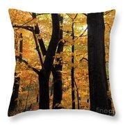 Pequaming Fall Throw Pillow