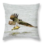 Perch On The Run 2 Throw Pillow