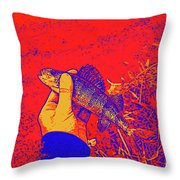 Perch Red Yellow Blue Throw Pillow
