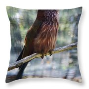 Perched - 3  Throw Pillow