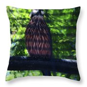 Perched - 4 Throw Pillow