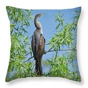 Perched Anhinga Throw Pillow